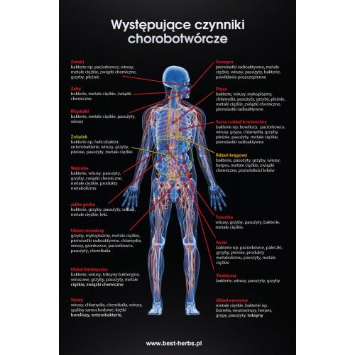 Plakat czynniki chorobotworcze na czarnym tle