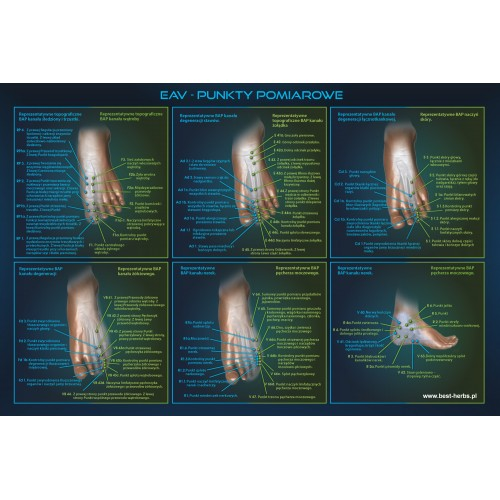 Punkty meridianów na nodze - niebieskie tło
